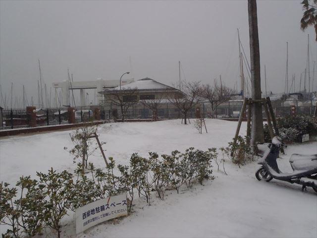 西緑地からのお知らせ| 積雪
